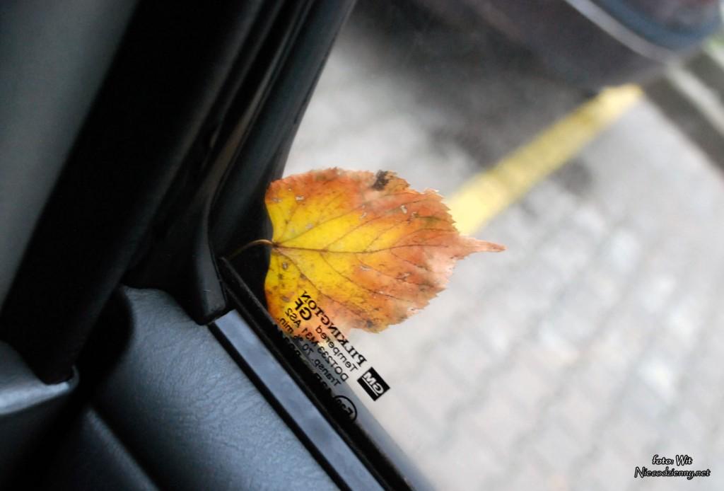 jesien_0